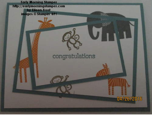 Twisted Triple Time Card - Zoo Babies