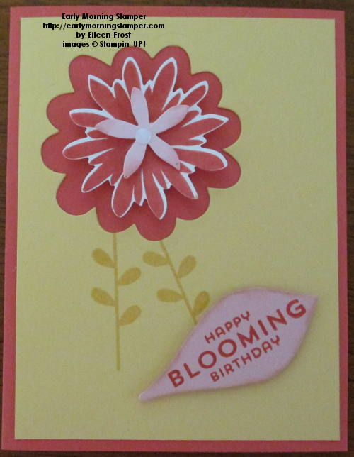 Flower Patch JUG#352